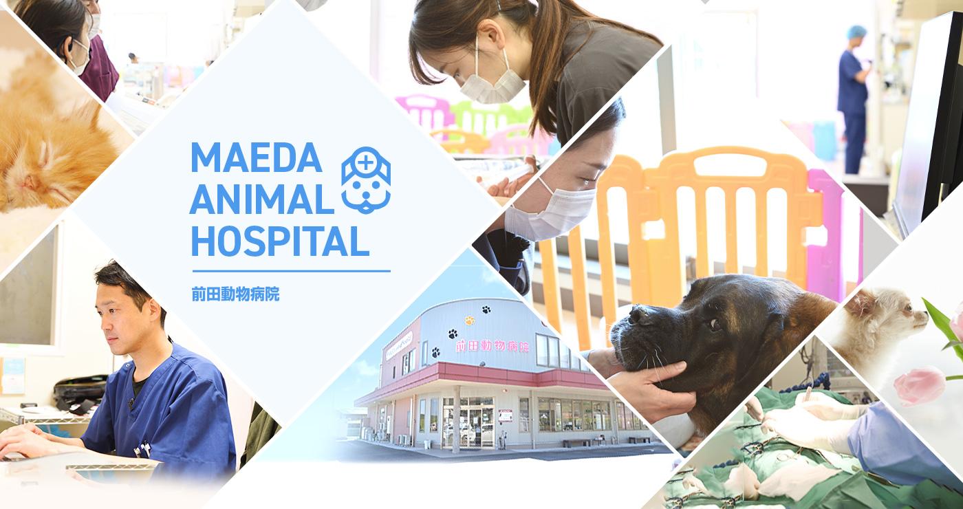 MAEDA ANIMAL HOSPITAL